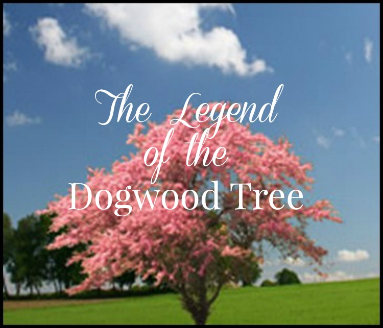 The Legend Of The Dogwood Tree Dining With Debbie