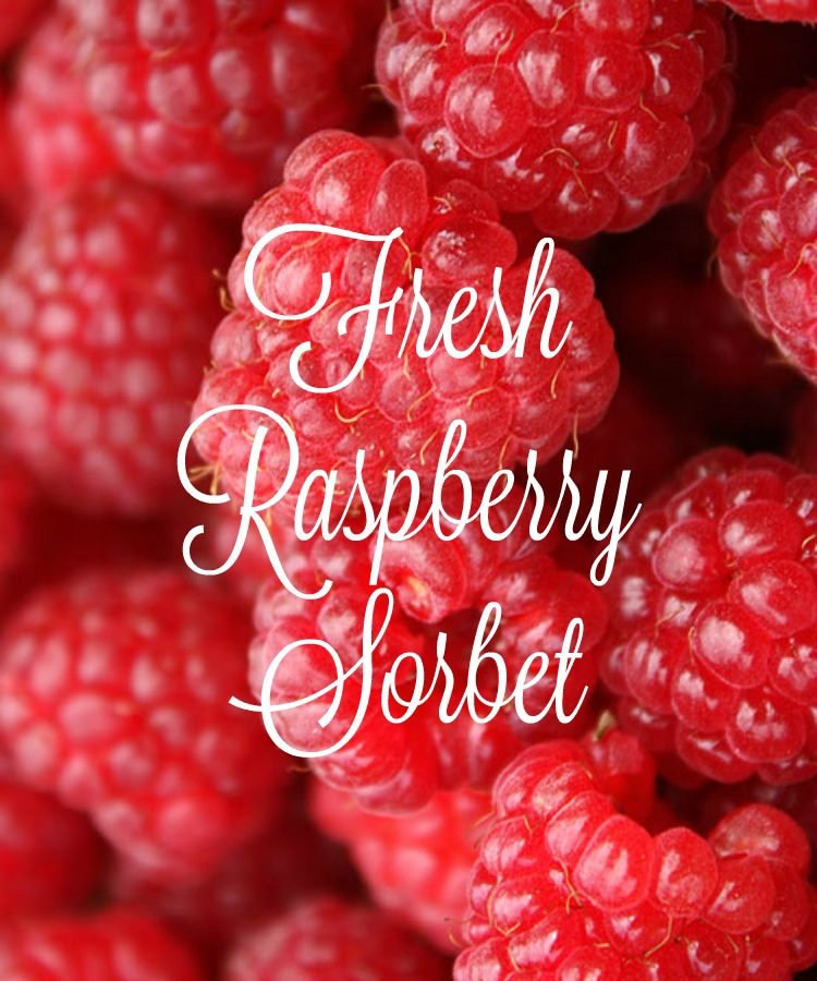 fresh raspberry sorbet berries