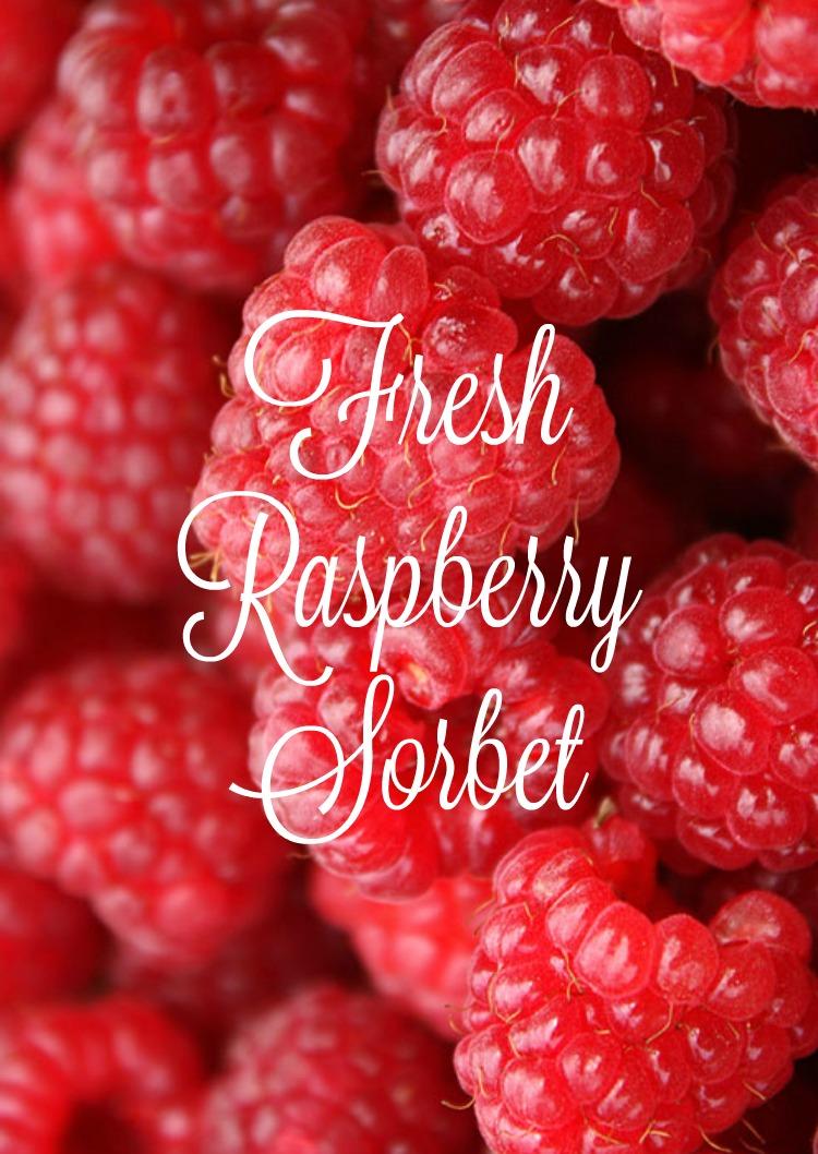 Fresh Raspberry Sorbet