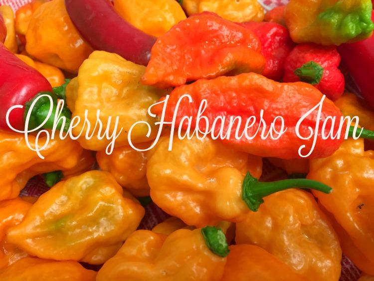 Preserving Summer: Cherry Habanero Jelly
