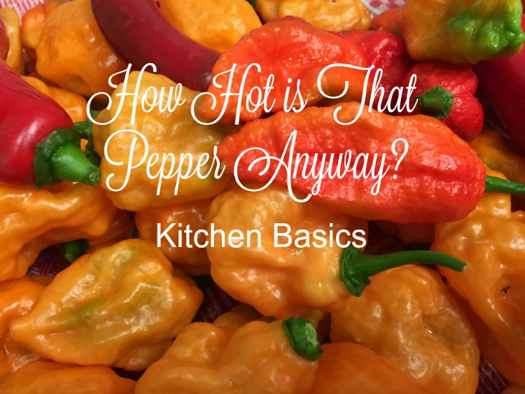 How Hot is That Pepper Anyway? {Kitchen Basics}