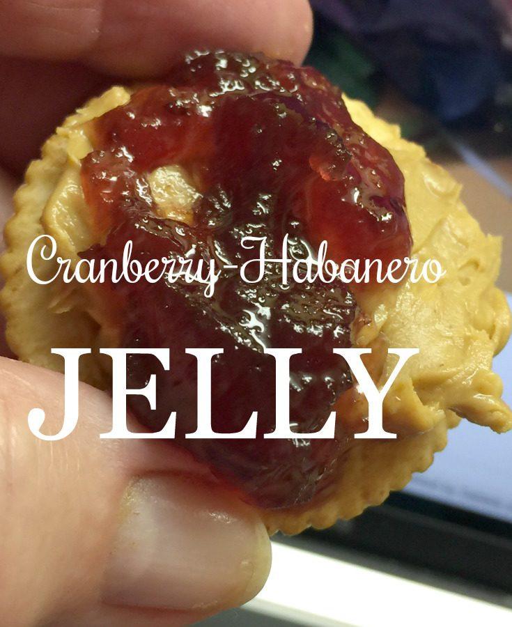 Preserving Winter: Cranberry Habanero Jelly va diningwithdebbie.net